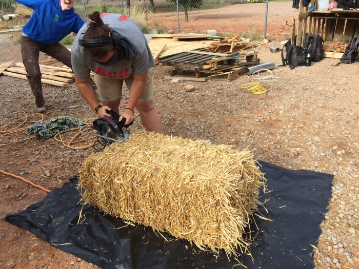chopping straw with a circular saw